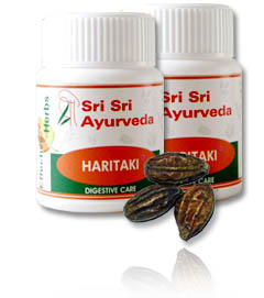 Haritaki – Terminalia Chebula For Colon Cleansing & Constipation